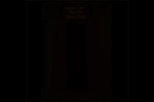 AEG FFB53610ZM
